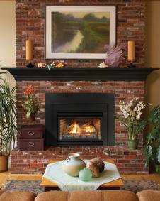 Fireplace Inserts White Mountain Hearth Mutual